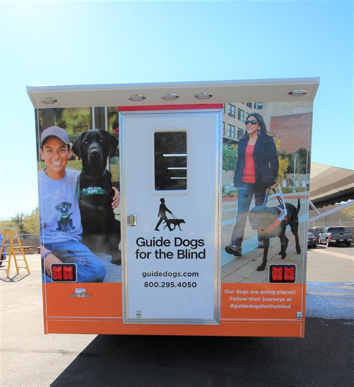 Guide Dogs for the Blind Puppy Training -Quality Vans
